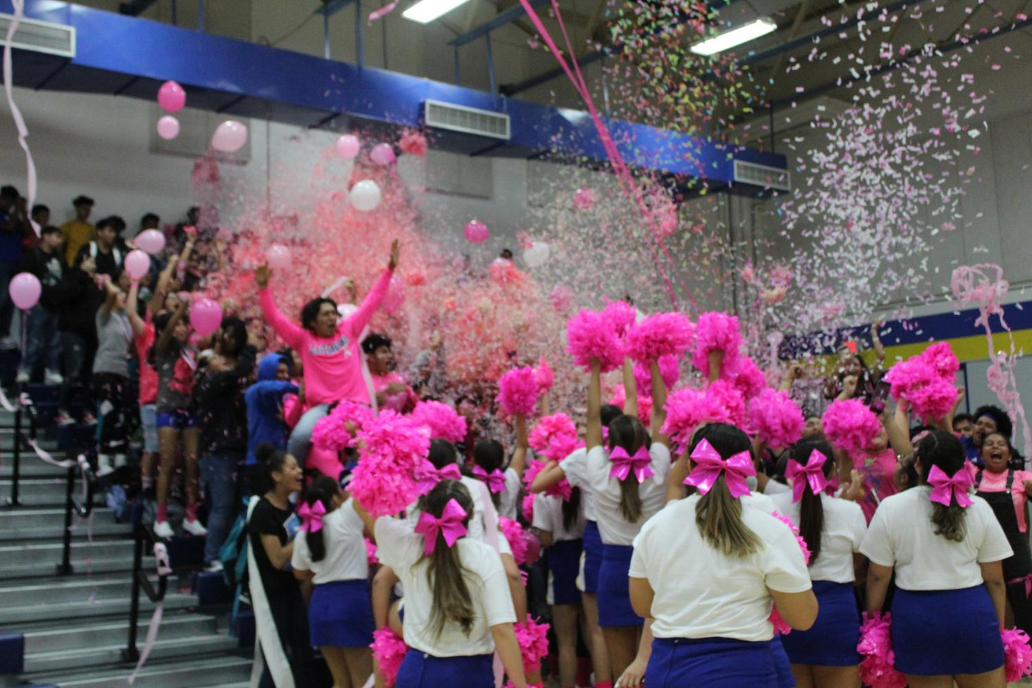 Pink Out Pep Rally